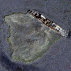 Historic Treasure in the Atlantic City Mud