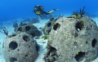 Shipwreck Data Base Turns Two